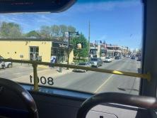 Bus, Ottawa